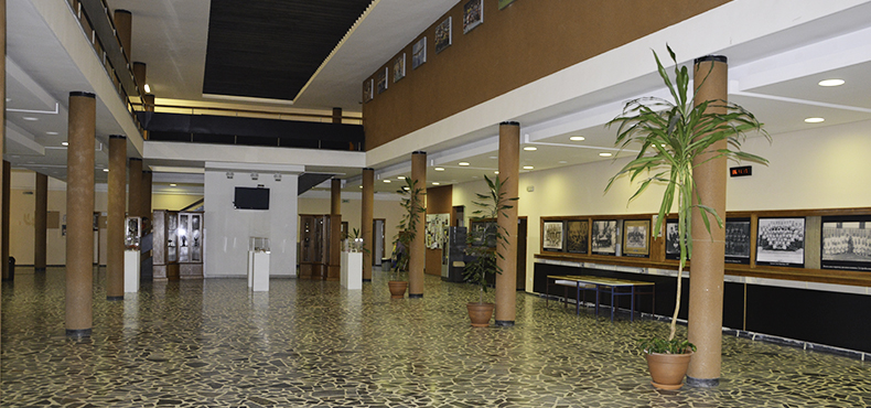 Faculty of Sport and Physical Education